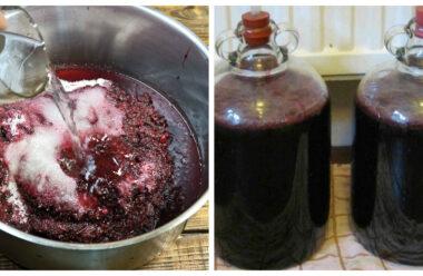 Один з кращих рецептів домашнього вина з винограду. Секрети правильного приготування.